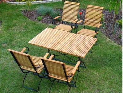 gartenm bel aus robinie wetterfest klappbar iter garten. Black Bedroom Furniture Sets. Home Design Ideas